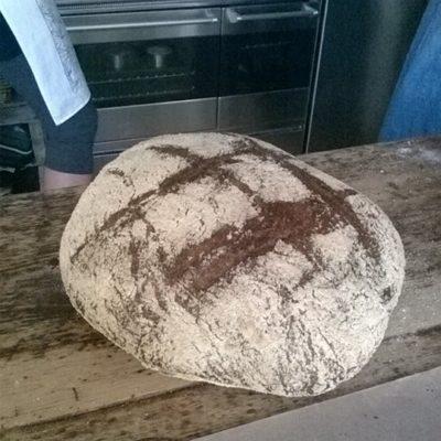 Companions Real Bread CIC