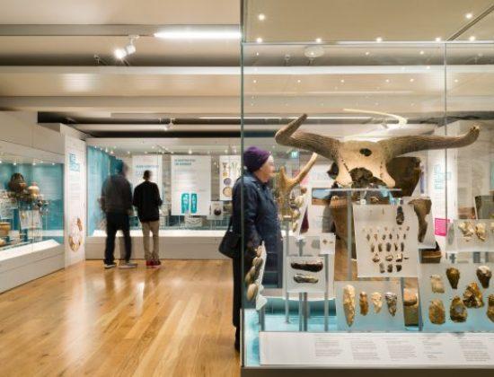 The Higgins Art Gallery & Museum